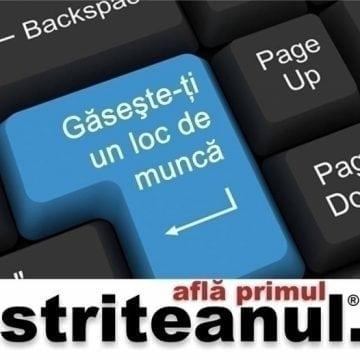 Regalia Home și IMP România Ind Bistrița fac angajări! Alte oferte de muncă atractive