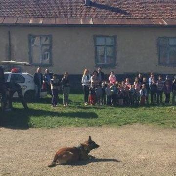 FOTO:  Lord, câinele polițist, FURĂ!