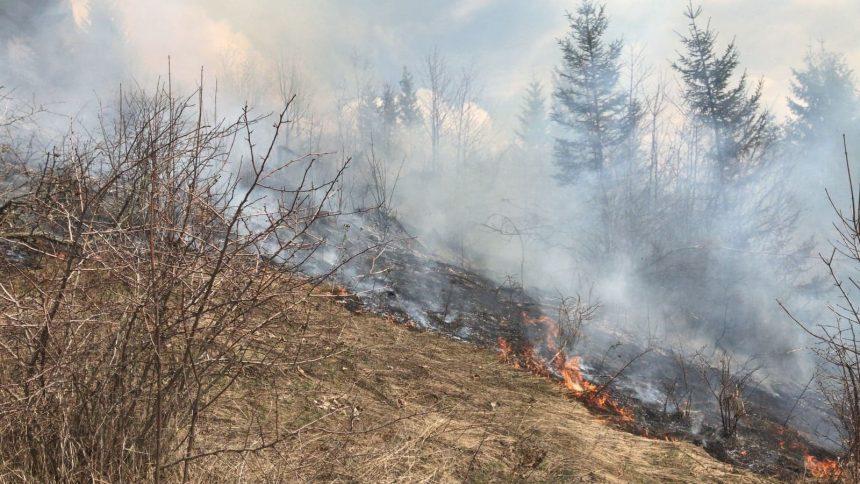 Se mișcă lucrurile! Amenzi aplicate pentru arderile de vegetație scăpate de sub control