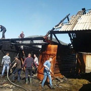 FOTO/VIDEO Lunca Ilvei: Și-au pierdut aproape 80 de animăluțe în incendiul ce le-a cuprins gospodăria