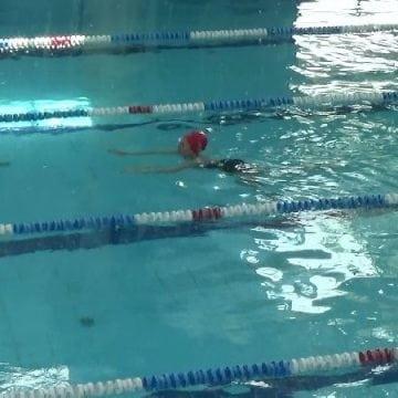 FOTO/VIDEO – Invitație la înot…!