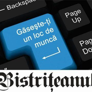 IMP Romania, filiala Bistriţa, angajează agent de vânzări! Se caută şi un director economic priceput!