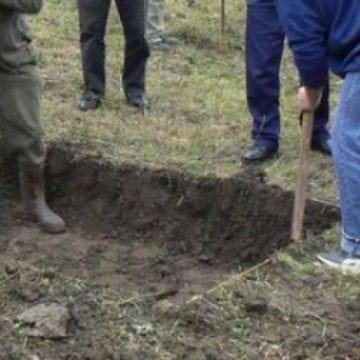 Șanț: Polițiștii au dezgropat niște rămășițe îngropate în 2014