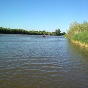 Bărbat înecat în Someș. Femeie mușcată de viperă