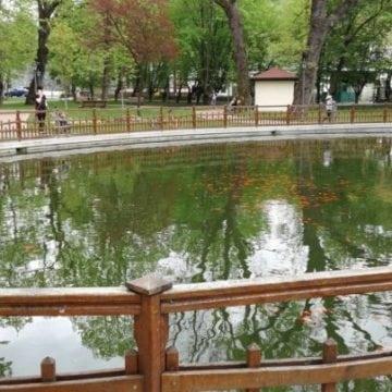 Cam cât ne costă iazul cu pești din parc și udatul florilor prin oraș? Cam 9.000 de euro…
