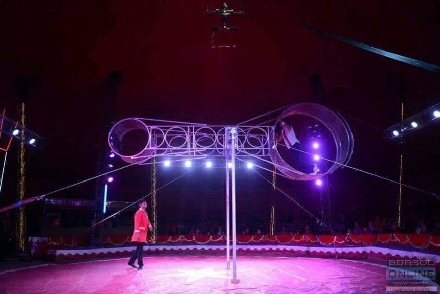 Circus Gartner la Bistrița! Pentru ultima oară puteți vizita animalele în circ!