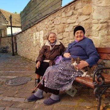 Rostul de dimineață.  Raiul de pe pământ – într-un pasaj cu bunici și pisici din Bistrița