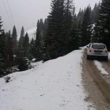 FOTO/VIDEO: Ninge abundent și viscolit la Valea Blaznei. Strat de zăpadă și de 10 cm
