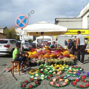 FOTO. O splendoare, pe străzi: Mii de crizanteme au acoperit trotuarele din Bistrița!