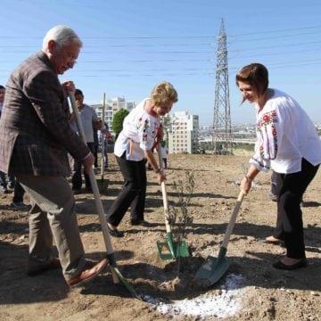VIDEO: Un privilegiu uriaș! Un parlamentar din Bistrița a plantat ieri măslini, în Turcia