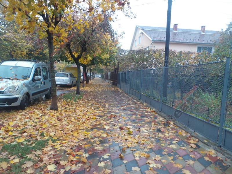 Rostul de dimineață: Nicăieri nu plouă mai deprimant decât la Bistrița…