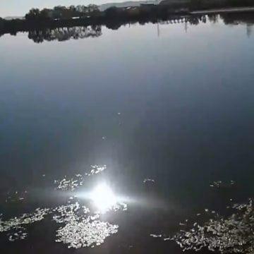 Rostul de dimineață.  O minune, lângă barajul Bistriței…! Un semn divin…?