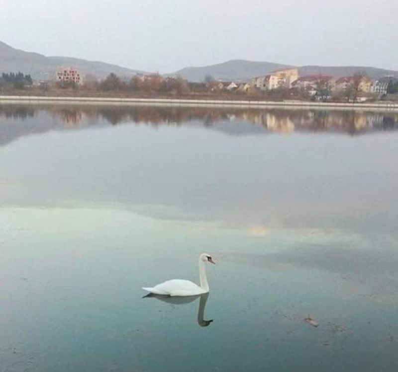 FOTO:  Ce se va întâmpla la iarnă cu minunea de la Lac…?!