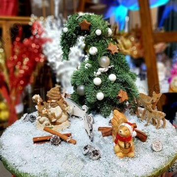 A venit Crăciunul, la Euforia Floral Boutique!