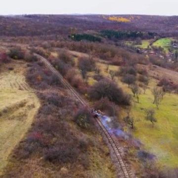 VIDEO SPECTACULOS! Cum sunt marcați cei 100 de ani de România, prin pădurea Ocniței și dealurile Comlodului