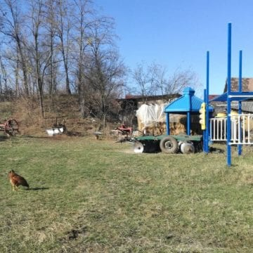 FOTO/VIDEO – Gospodaru-i gospodar până la capăt! O familie din Fântânița și-a prelungit gospodăria în curtea școlii…