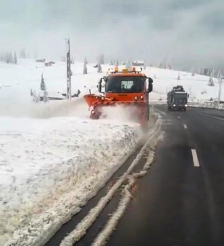 VIDEO: Au pus autofreza la lucru, în Tihuța!