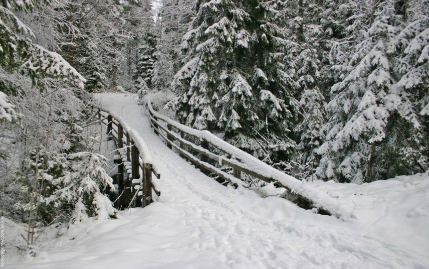 Ilva Mică: Bărbat găsit înghețat, sub un pod