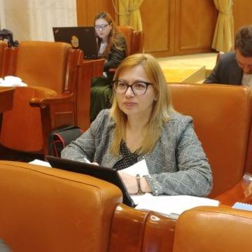 Care este situația învățământului profesional dual în Bistrița?