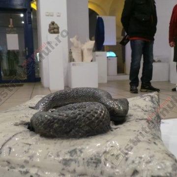 De admirat, la Bistrița: Șarpele de metal, Omul-carte sau sârma ghimpată împletită în sticlă