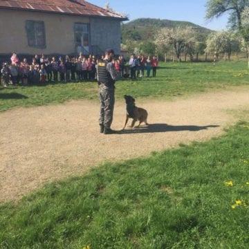 Ajutor de nădejde! Tot la 10 zile, câinii îi însoțesc pe polițiști în acțiunile lor!