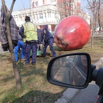Dispar merele uriașe de pe Bulevardul Republicii?!