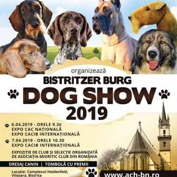 Pentru toți care iubesc câinii: Bistritzer Burg DOG SHOW 2019, în weekend, la Bistrița!