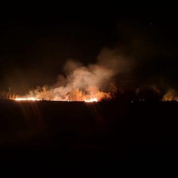 VIDEO: Incendiu de pădure în Coșbuc! Sătenii, chemați să ajute!