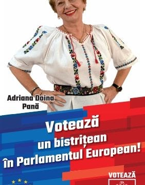 Doina Pană: Salariu minim egal pentru românii angajați în companiile multinaționale din România cu angajații din țarile din Vest!