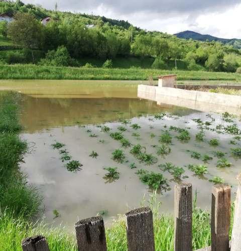 FII  REPORTER – Maieru: Teren invadat de ape, din cauza neglijenței celor de la restaurant!