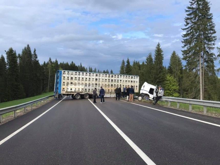 FOTO – Un TIR a blocat DN17, în Pasul Tihuța