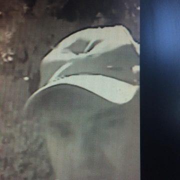 FOTO/VIDEO: Poliția are nevoie de voi! Îl recunoașteți? A jefuit o bătrânică!