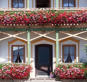 """START! Concursul """"Bistrița verde"""" își așteaptă cele mai frumoase grădini și balcoane cu flori"""