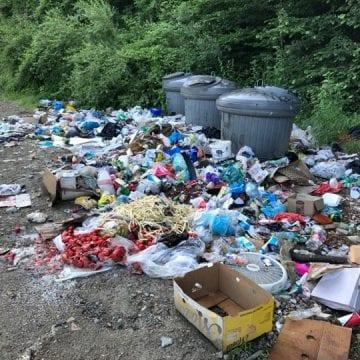 Aproape 100 de bistrițeni sancționați, de la începutul anului: Au aruncat gunoiul aiurea