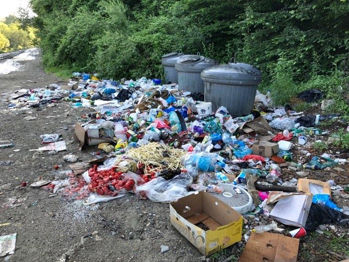 Bistrițenii care aruncă gunoiul aiurea, surprinși cu camere video. Big Brother pentru pubelele din orașe