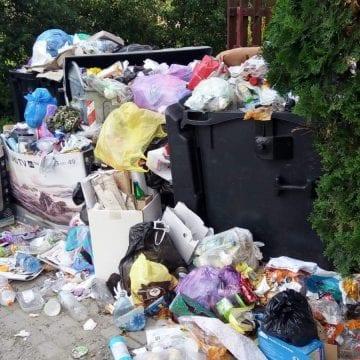 FOTO: Din cauza unei bariere, stau cu gunoiul sub nas de mai bine de o săptămână