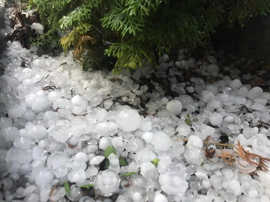 FOTO/VIDEO: Ploaie cu gheață, după caniculă, la Bistrița