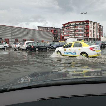 VIDEO Bistrița, după ploaie: Tati, vreau să mergem pe balta mare…