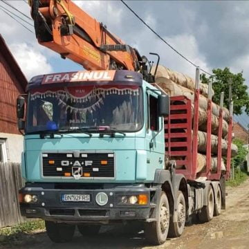 Locuitorii din Livezile se plâng că le dispar pădurile plantate de străbunici