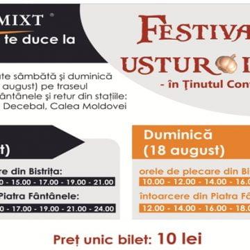 Cum se ajunge la Festivalul Usturoiului în Ţinutul Contelui Dracula