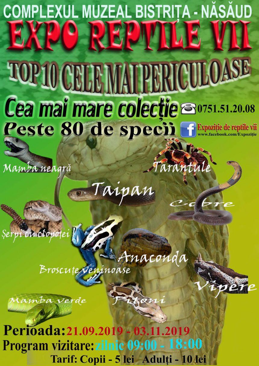 Mamba verde, Cobra egipteană și alte zeci de specii de reptile vii, în expoziție, la Muzeu