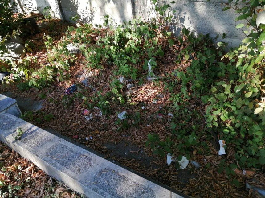 FOTO – FII REPORTER! Prezervative și mizerie de nedescris în cimitirul de pe Tărpiului