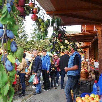 """FOTO: Toate fructele şi legumele, în Heidenfeld, la """"Toamna Bistriţeană""""! Se vând mărunţişuri şi în Decebal, prin gard"""