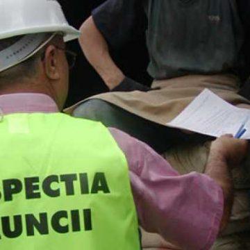 6 bărbați din Ucraina, descoperiți muncind ilegal în Bistrița-Năsăud. Ce au pățit: