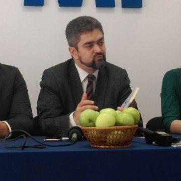 Theodor Paleologu: Campania pentru alegerile prezidențiale este total bruiată de criza politică și guvernamentală