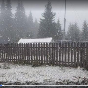 VIDEO – Hai afară la zăpadă: Ninge-n Pasul Rotunda!