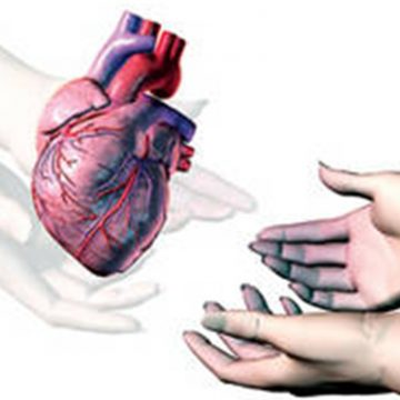 VIDEO: Metoda propusă de Lazany pentru a sensibiliza familiile în donarea organelor celor dragi