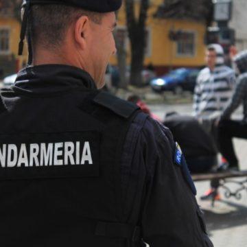 BISTRIȚA: Zeci de polițiști și jandarmi au verificat un cartier întreg, din ușă în ușă, după un apel cu un strigăt de ajutor la 112