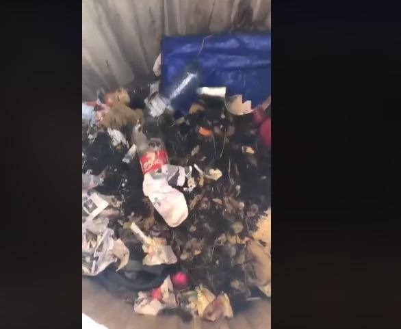 """VIDEO Cum au înțeles bistrițenii să selecteze gunoiul? Ce """"se ascunde"""" în pubelele dedicate reciclabilelor"""