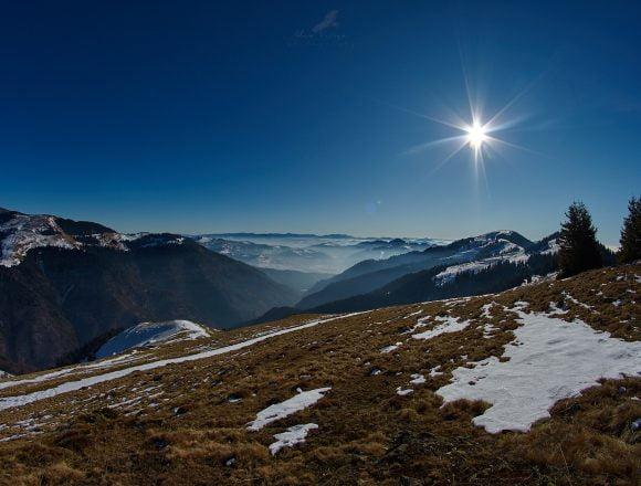 Rostul de dimineață:  Dacă iarna e în toi, nici primăvara nu poate fi prea departe…